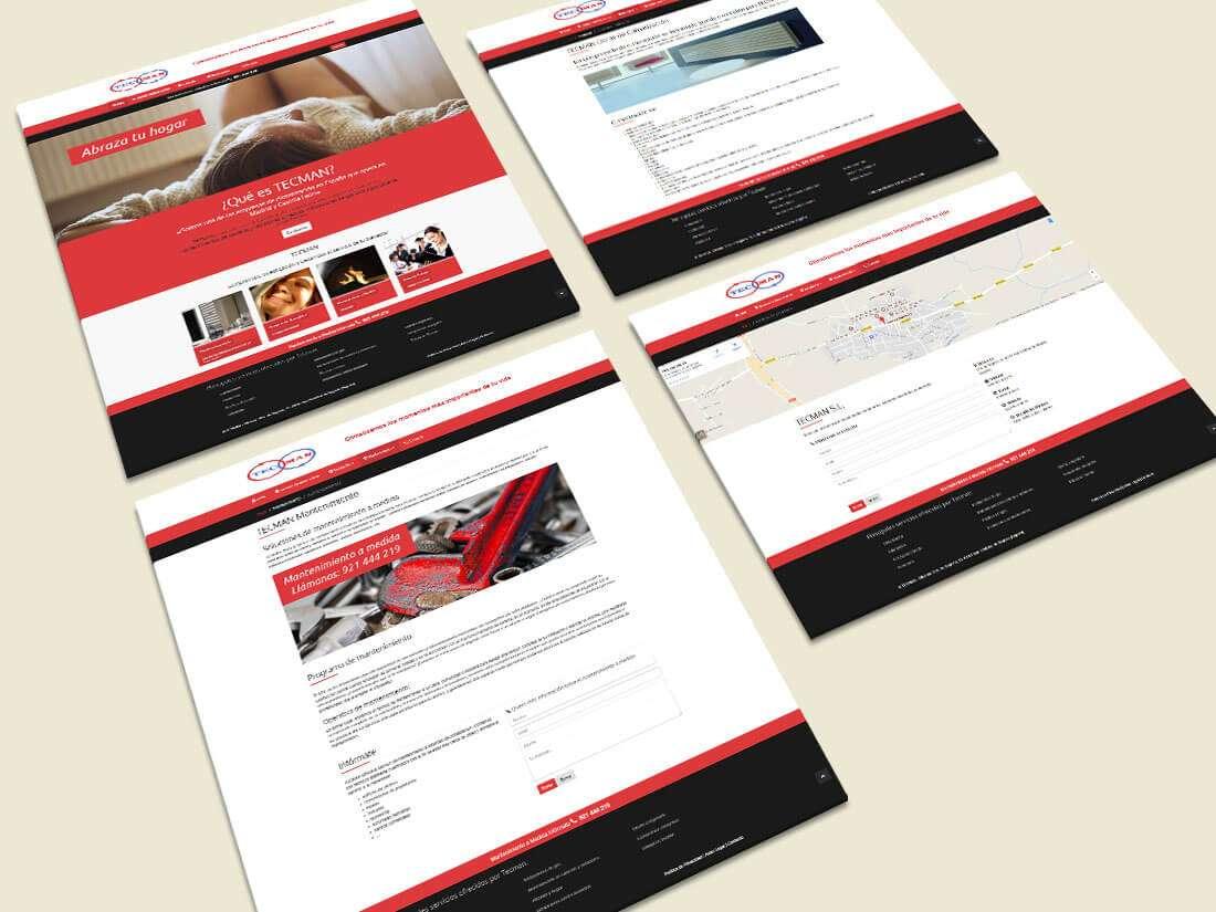 Tecman. Website, páginas